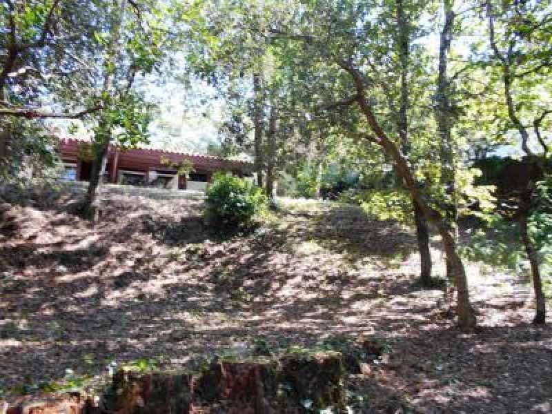 location villa l herbe bassin arcachon capimmo