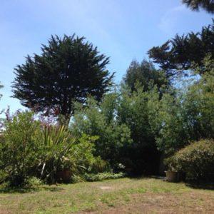 location villa l herbe 1245 bassin arcachon capimmo